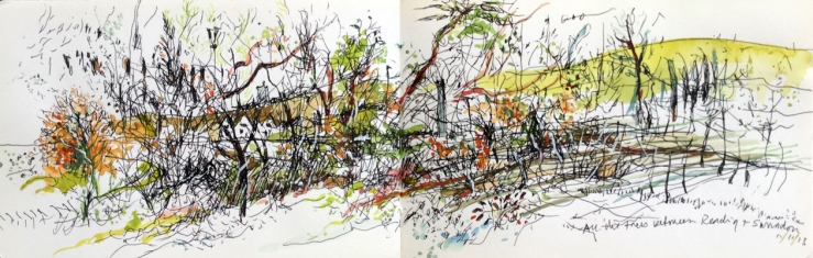 trees swidon